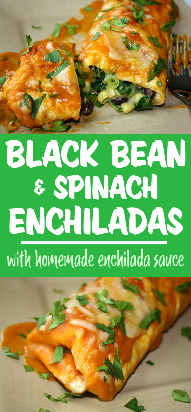 Black Bean Spinach Enchiladas with homemade enchilada sauce