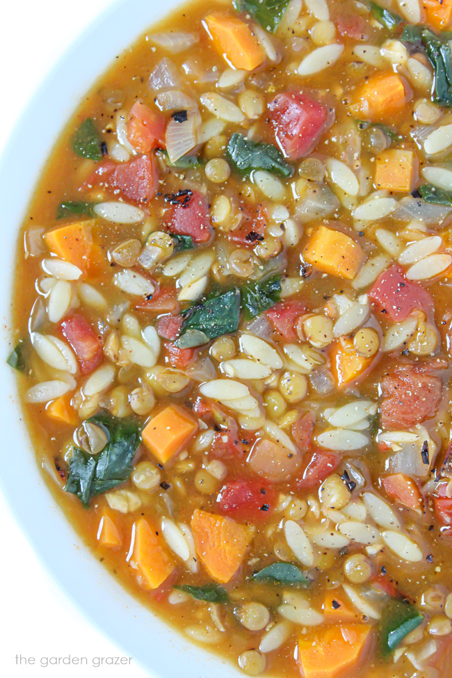 Large bowl of vegan lentil orzo soup with spinach, carrot, and tomato