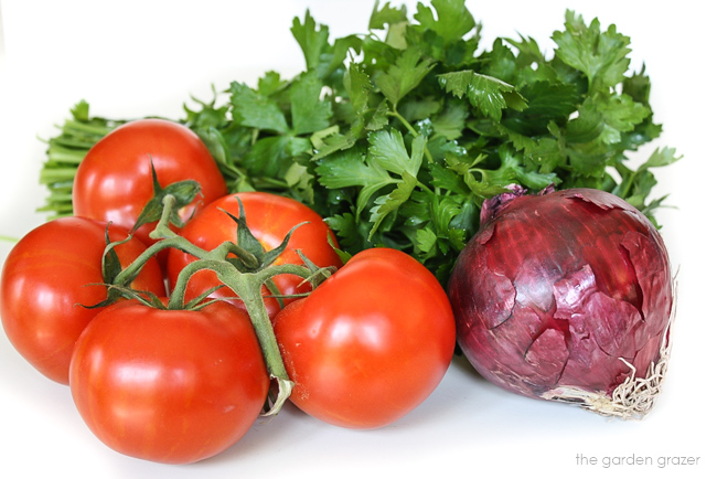 Fresh tomatoes, red onion, and parsley waiting to be prepared