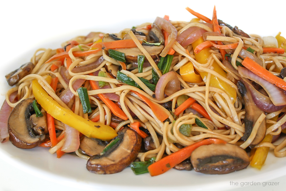 Vegetable lo mein on a plate