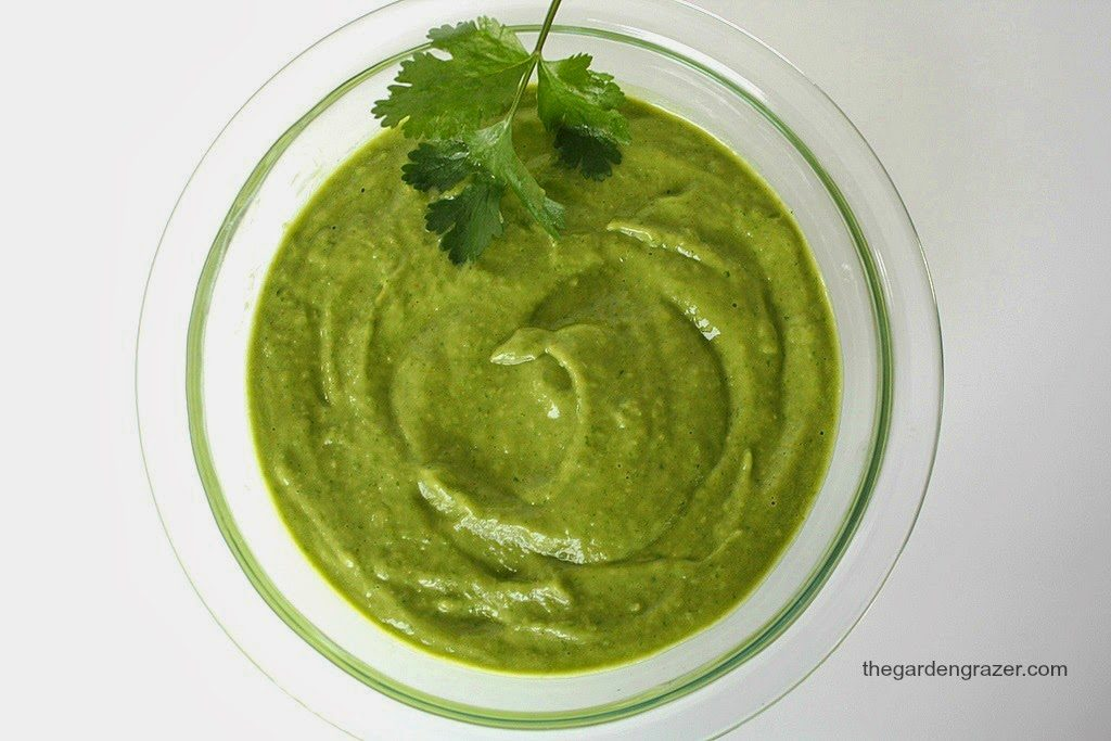 Vegan cilantro avocado sauce in a bowl