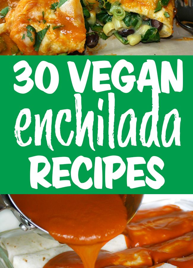 Vegan enchilada recipes photo collage