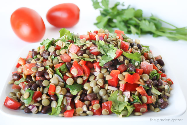 Plate of black bean lentil salad topped with cilantro