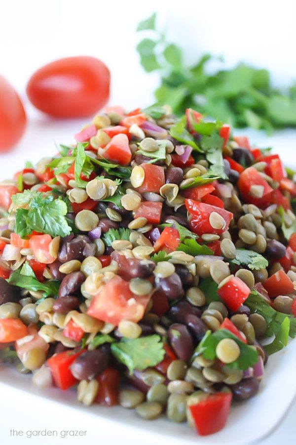 vegan black bean lentil salad on a plate with tomato and cilantro