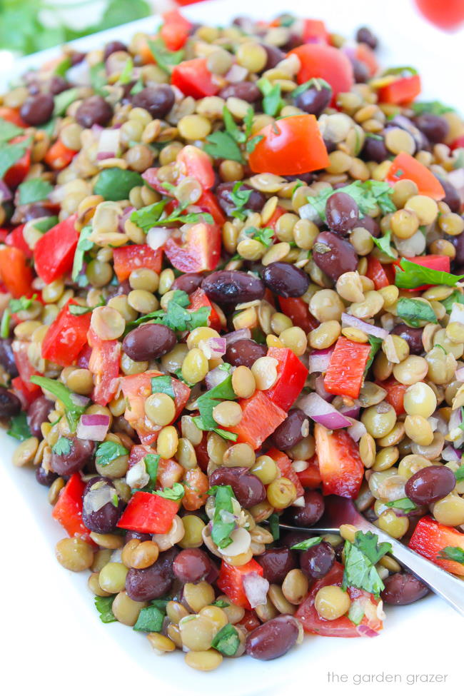 plate of vegan black bean lentil salad with tomato and cilantro