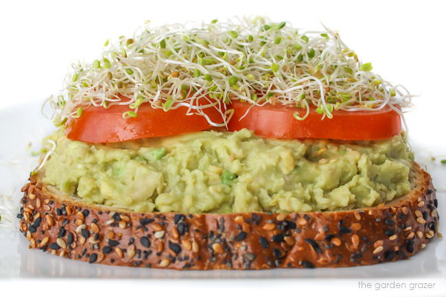 Chickpea avocado mash sandwich on a plate