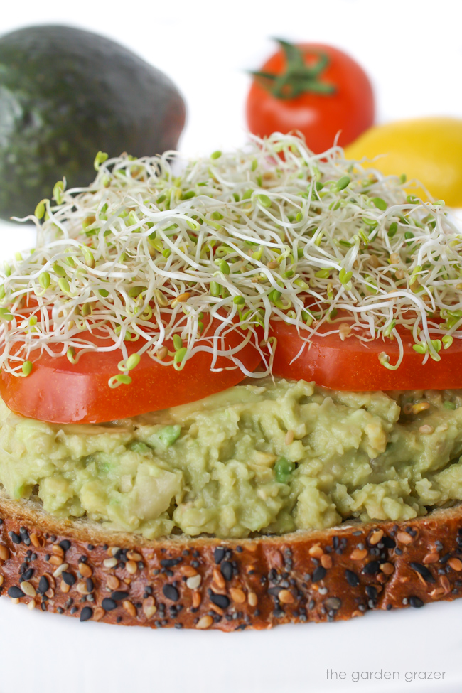 Chickpea avocado mash on bread with tomato and sprouts