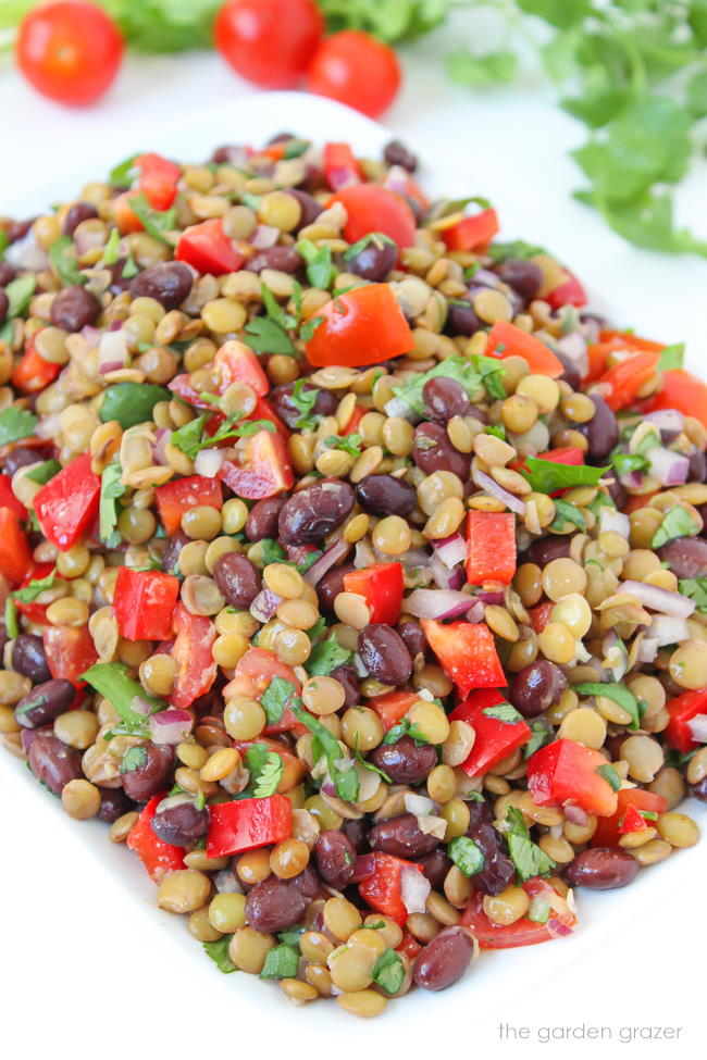 Lentil salad with black beans, tomato, and cilantro on a plate