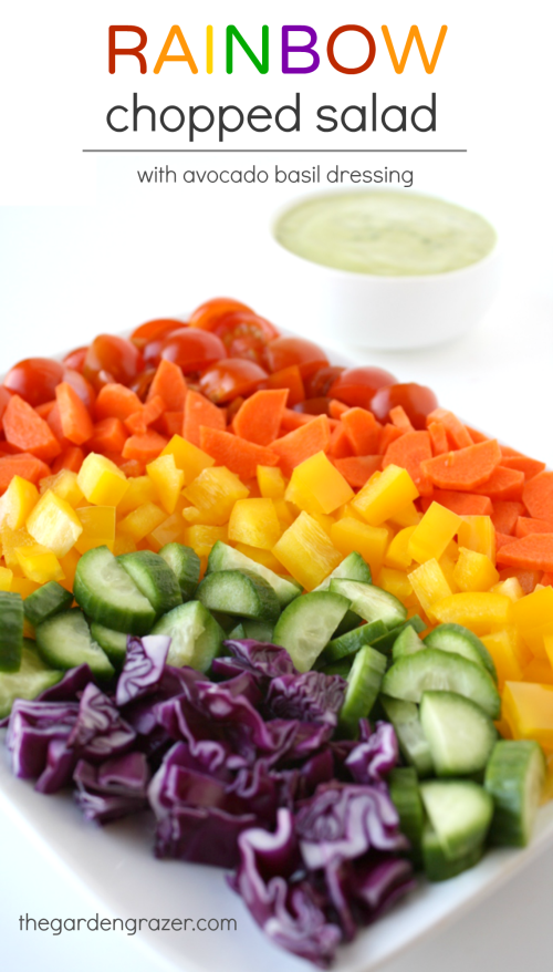 Vegan rainbow chopped salad with lemon basil dressing on the side