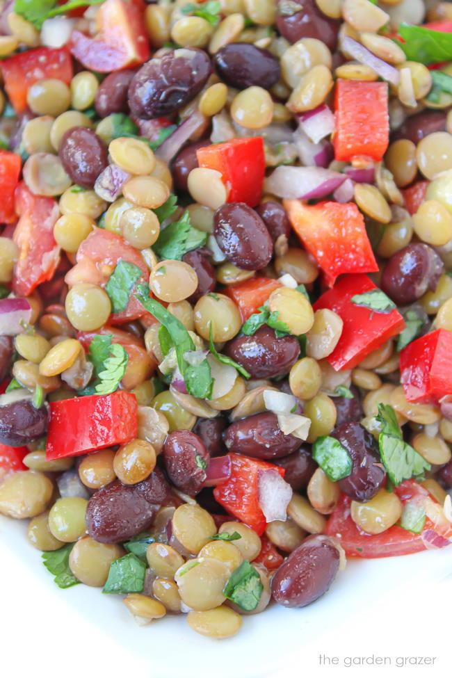 Vegan black bean lentil salad on a plate