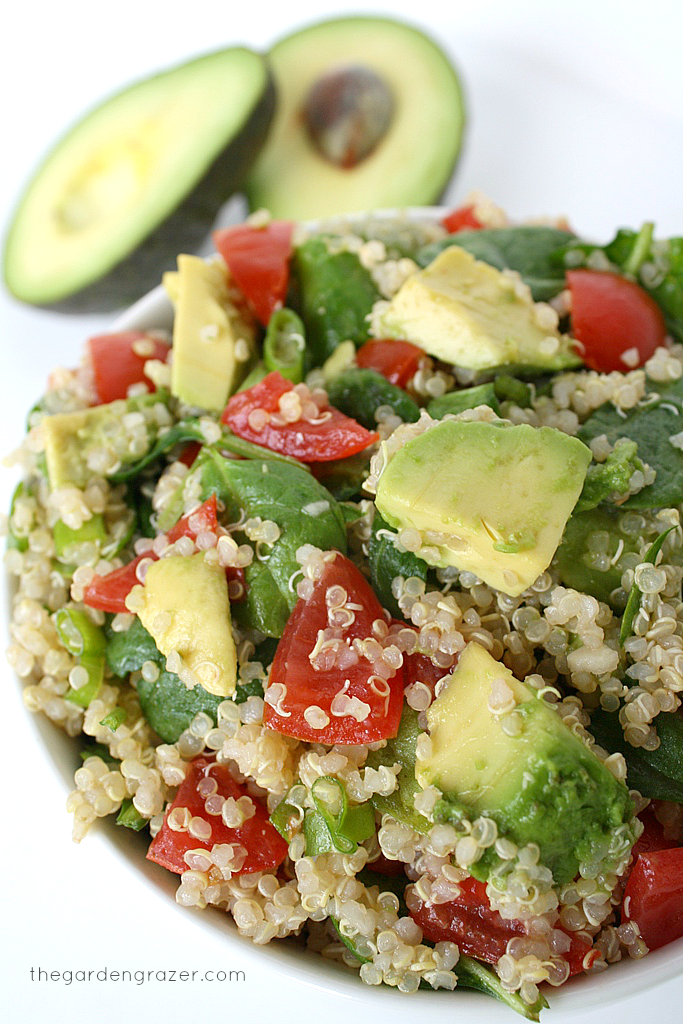Vegan quinoa avocado spinach salad in a bowl