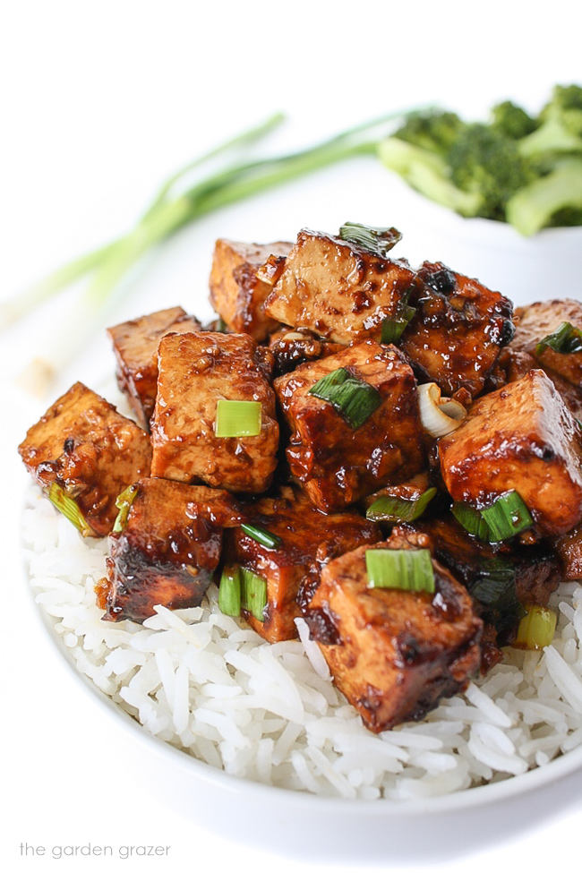 A bowl with white rice topped with tofu and green onions