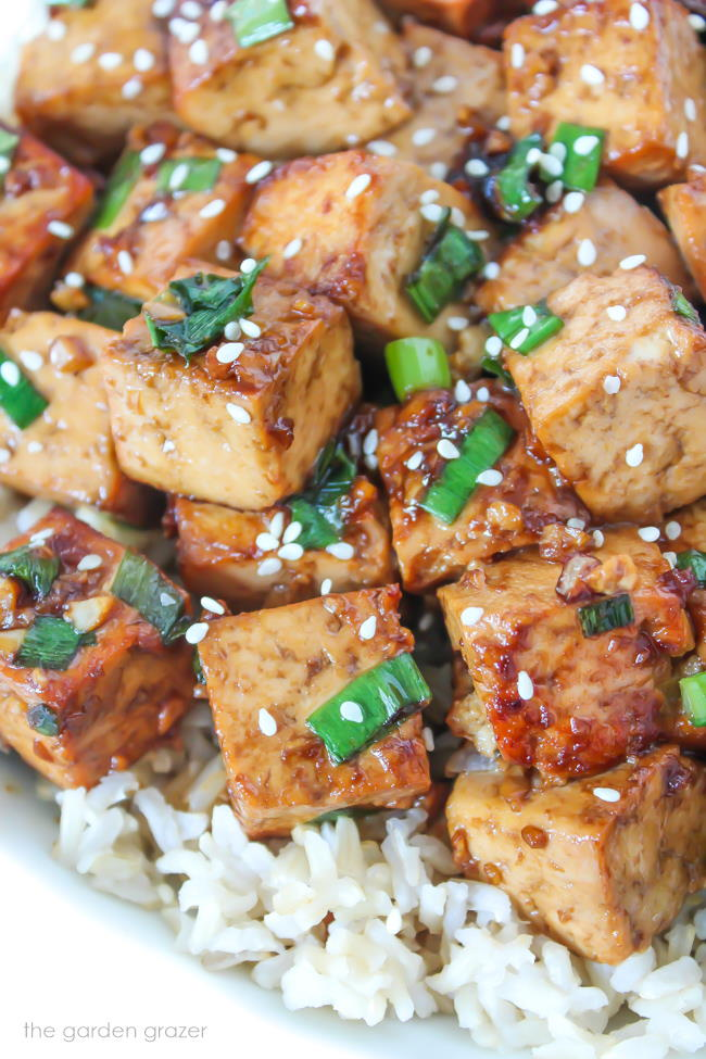Close up view of Asian-style garlic tofu cubes on brown rice