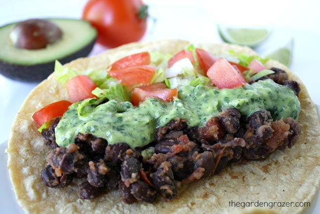 Black bean taco topped with avocado sauce