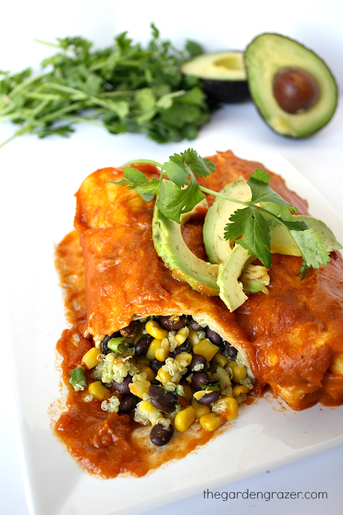 Black bean and avocado enchiladas with homemade sauce on a plate