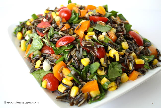 Plate of vegan wild rice spinach salad with tomatoes