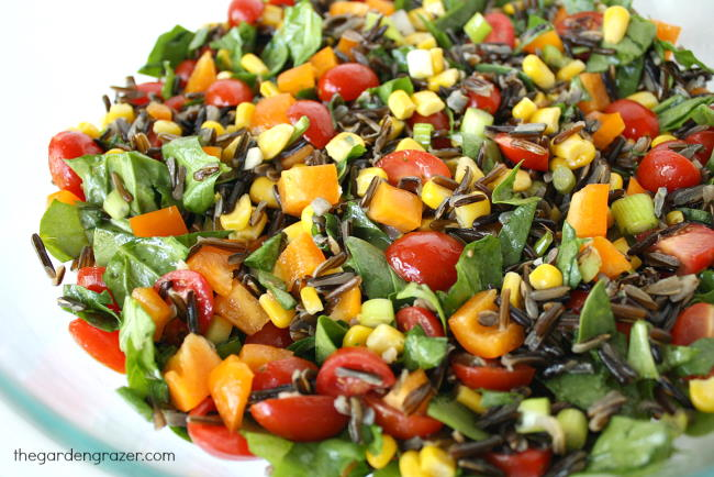 Wild rice vegetable salad in a bowl