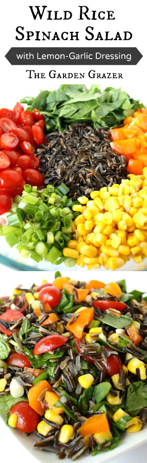 Vegan wild rice salad photo collage