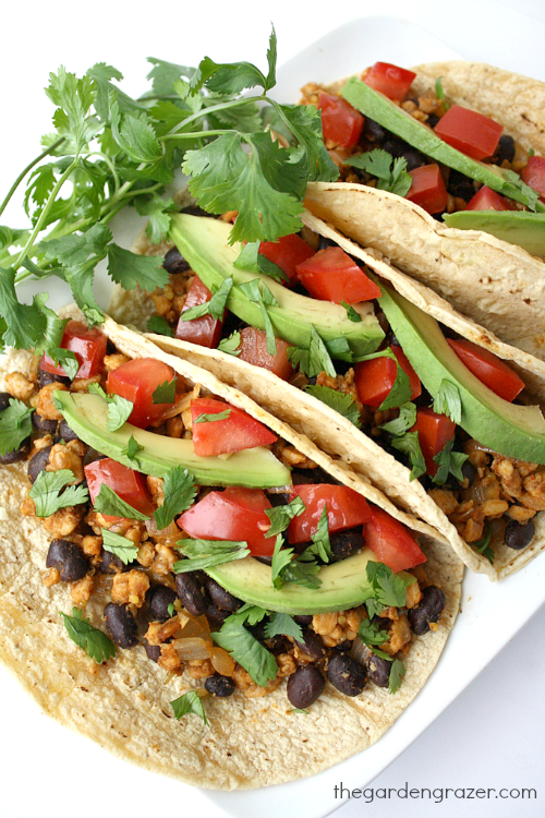 Vegan black bean tempeh tacos on a plate with cilantro garnish