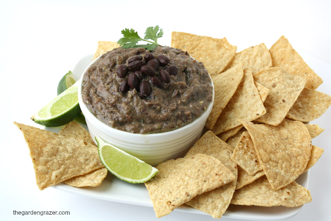 Bowl of black bean dip with chips on the side