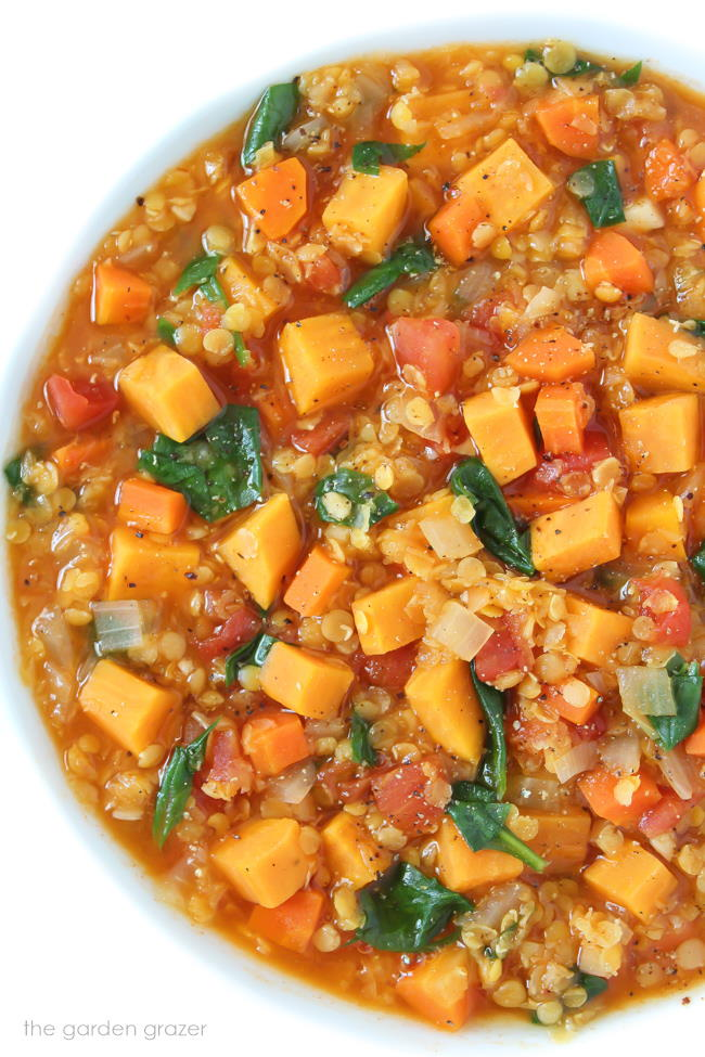 Vegan red lentil stew with sweet potatoes in a bowl