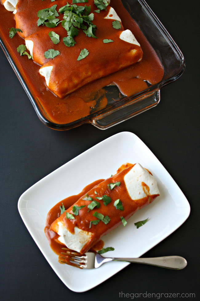 Plate with vegan enchilada and a fork