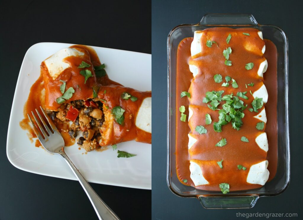 Vegan protein monster quinoa enchiladas in a pan and on a plate
