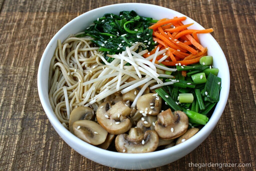 Vegan Asian Noodle Soup in a bowl