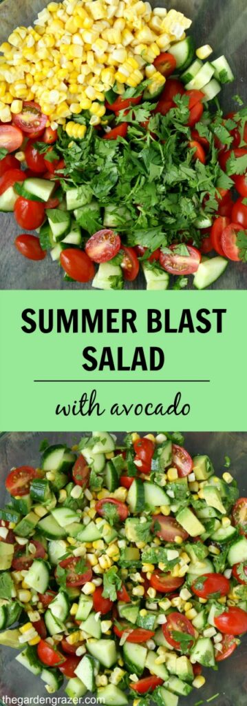 Summer blast salad photo collage