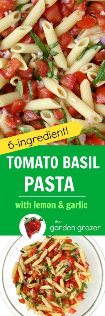 photo collage of tomato basil pasta