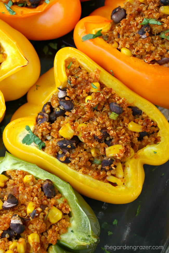 Cooked vegan quinoa stuffed peppers with black beans
