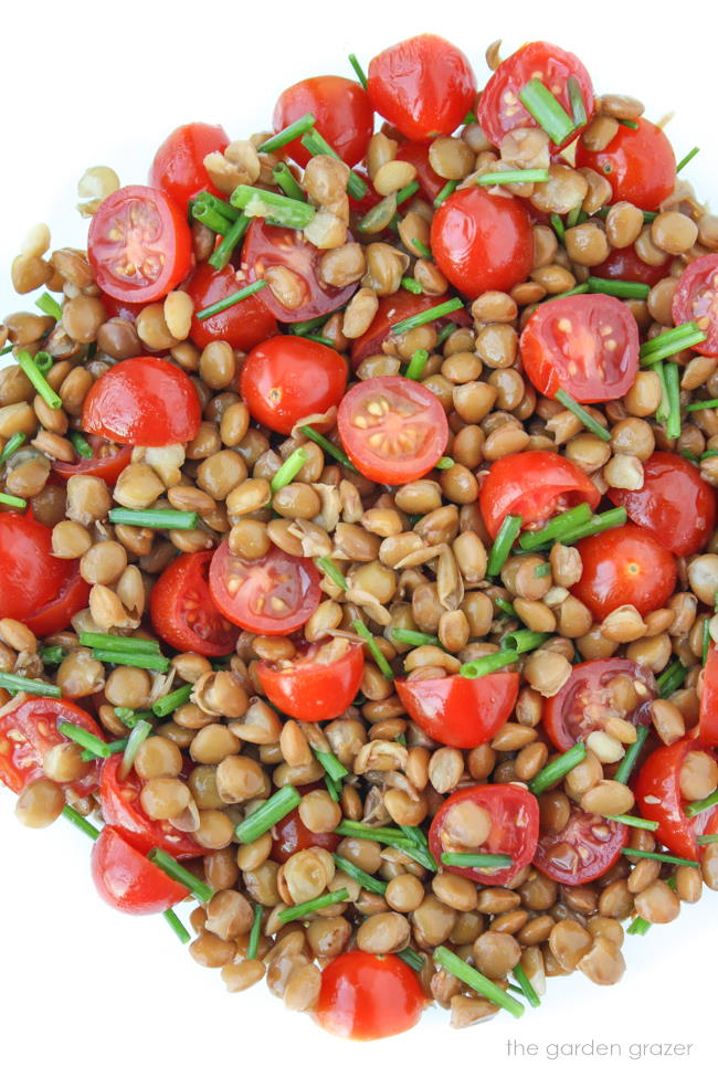 Tomato Lentil Salad tossed together in a bowl with chives
