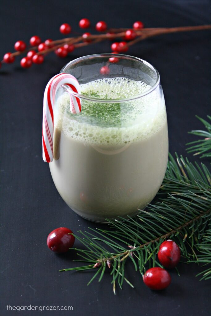 Vegan peppermint matcha latte in a glass with candy cane