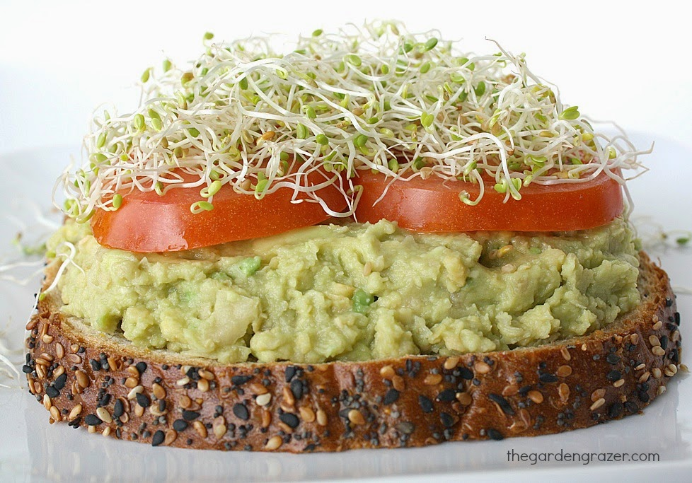Chickpea avocado mash sandwich on a plate