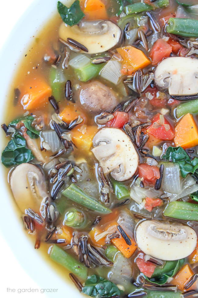 Bowl of wild rice vegetable soup with mushrooms