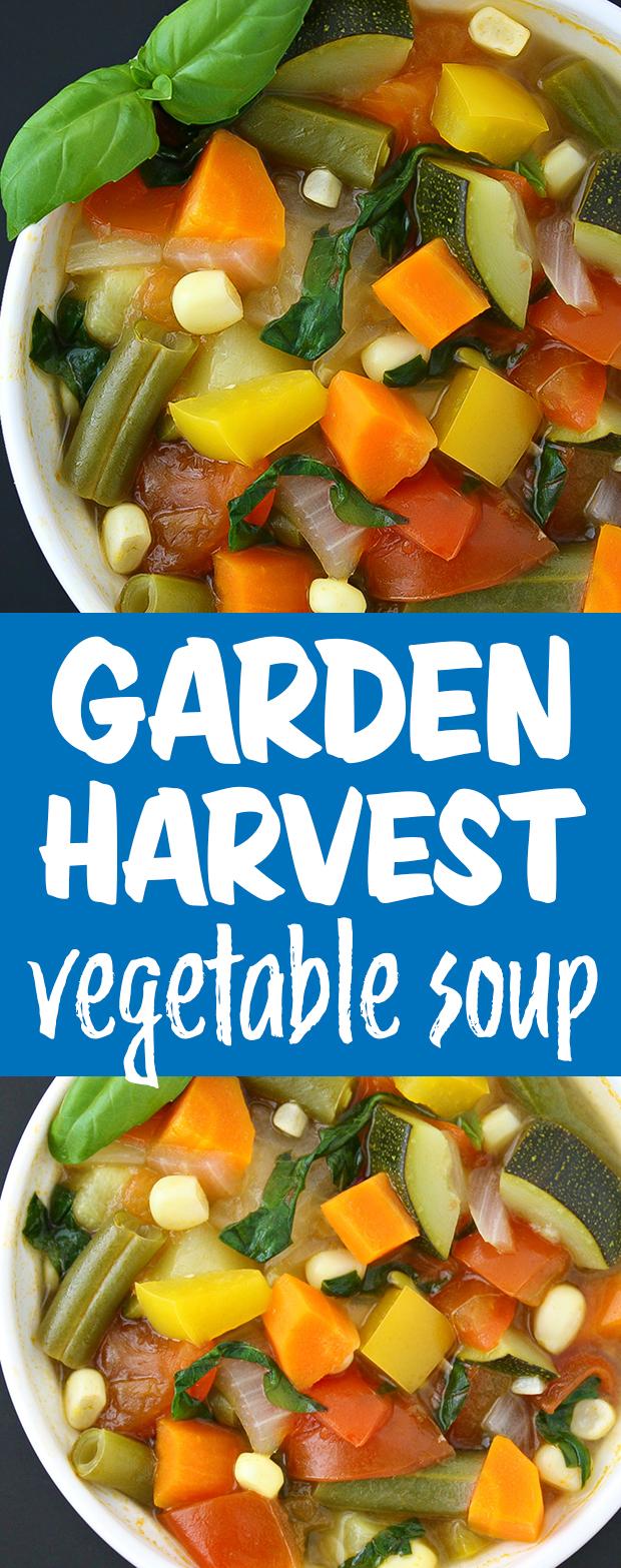 Vegan garden vegetable soup photo collage