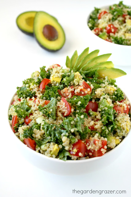 Avocado Salad with quinoa and kale in a bowl