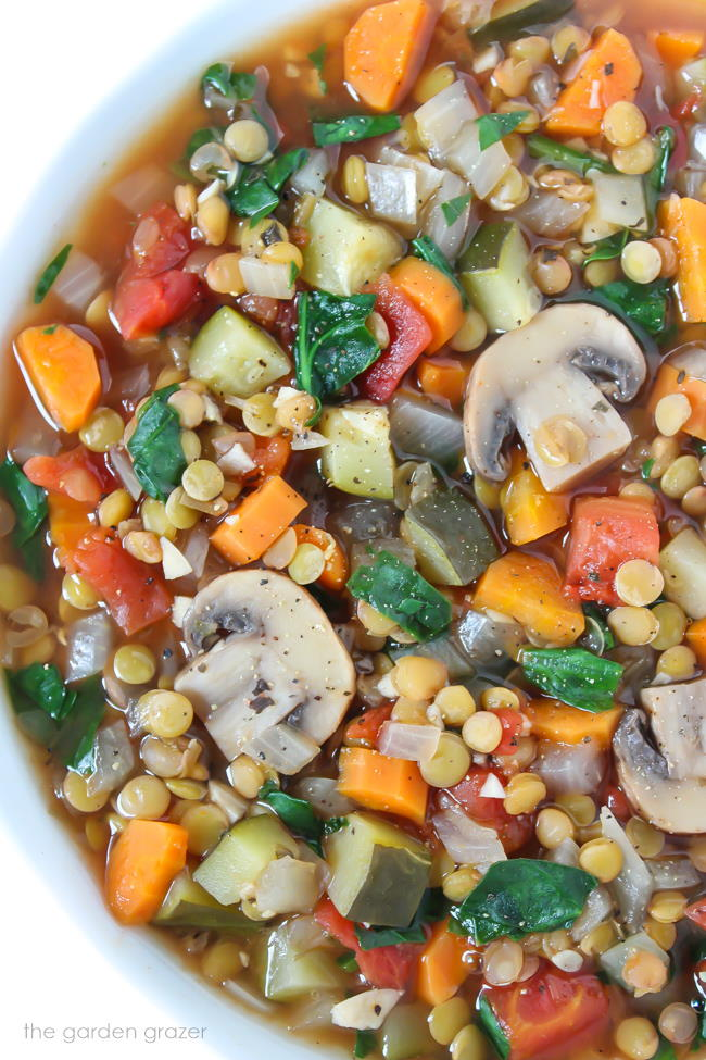 Vegan Lentil Veggie Soup in a bowl