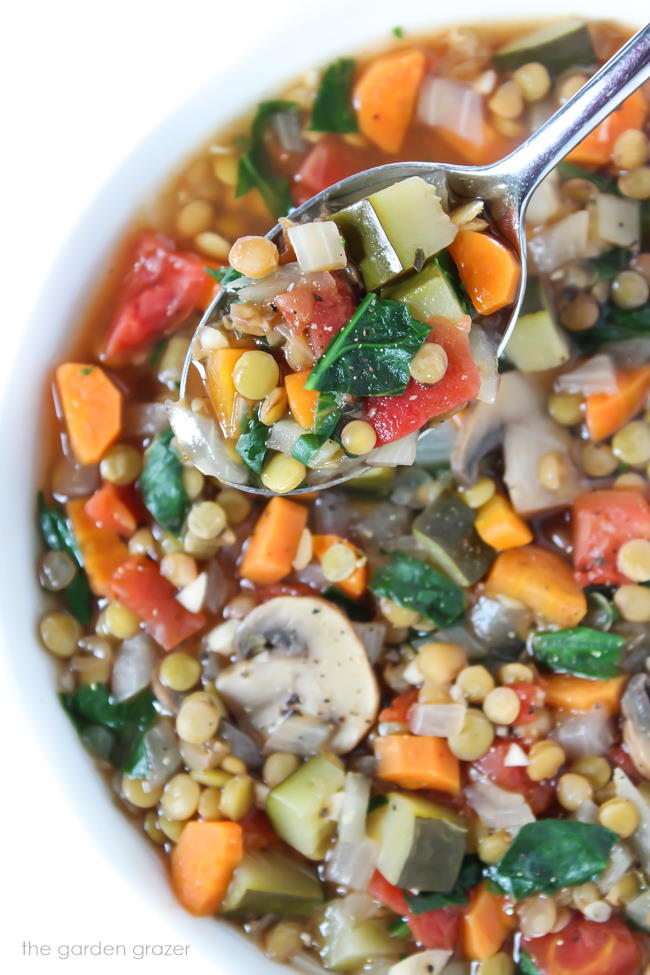 Spoon holding Lentil Vegetable Soup above the bowl