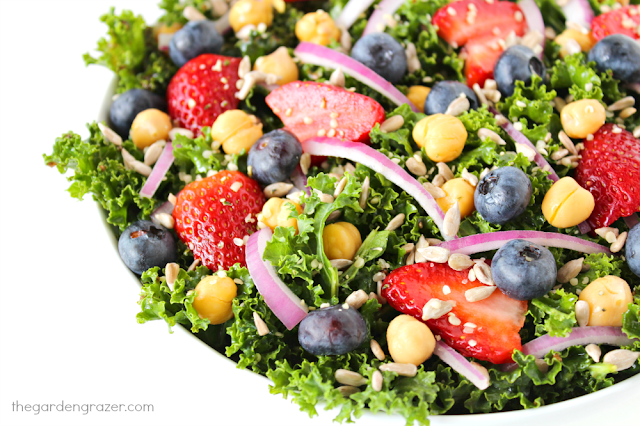 Bowl of super immunity power salad with kale, berries, and onions