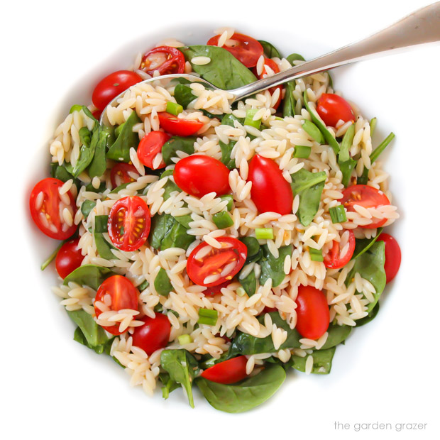 Bowl of orzo tomato salad with spoon