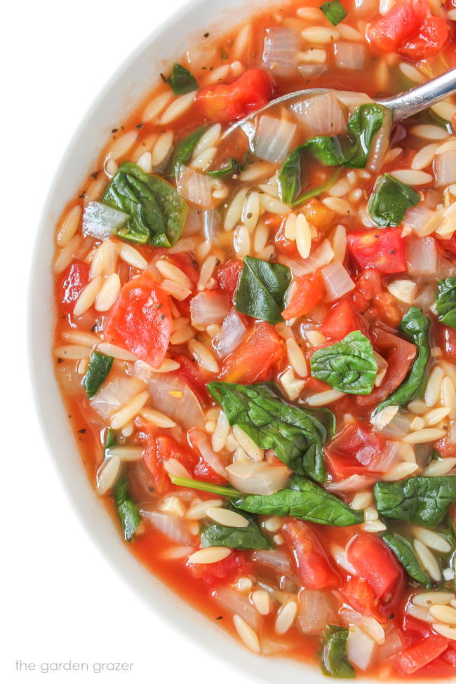 Close up view of vegan tomato orzo soup with spinach