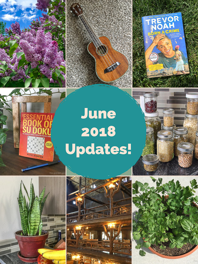 Photo collage of June 2018 updates