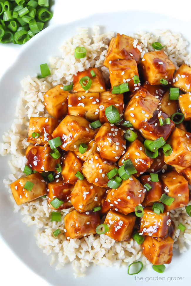 plate of teriyaki tofu on brown rice topped with green onions