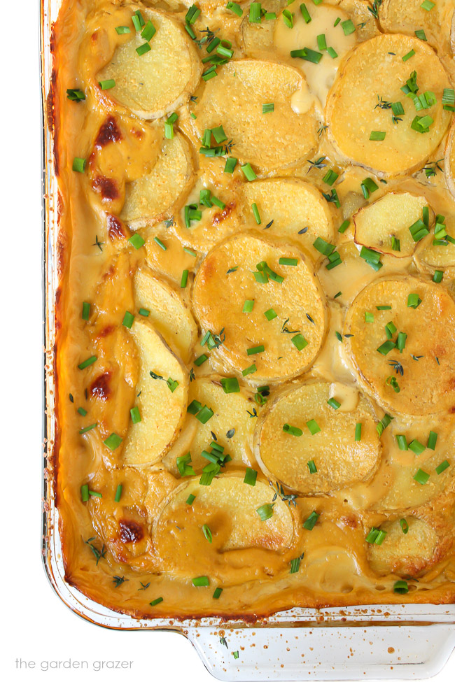 Pan of baked vegan scalloped potatoes garnished with chives