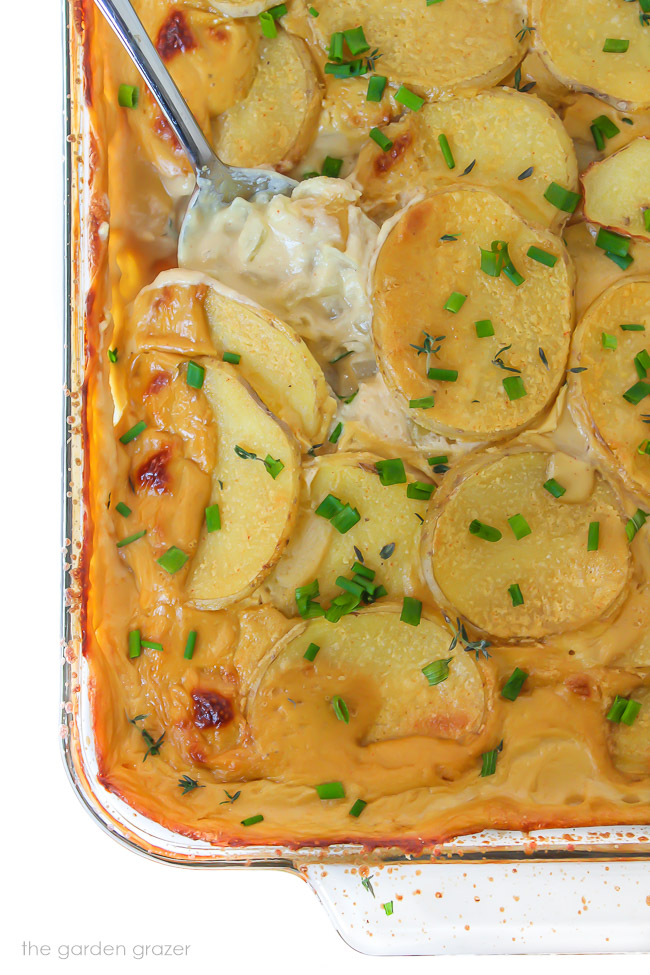 Vegan cheesy scalloped potatoes in a pan with spoon