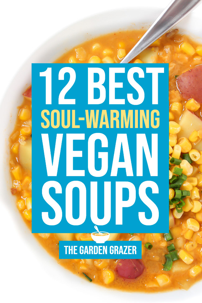 Graphic of 12 best vegan soup recipes