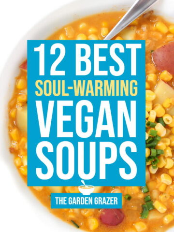 12 best soups photo collage