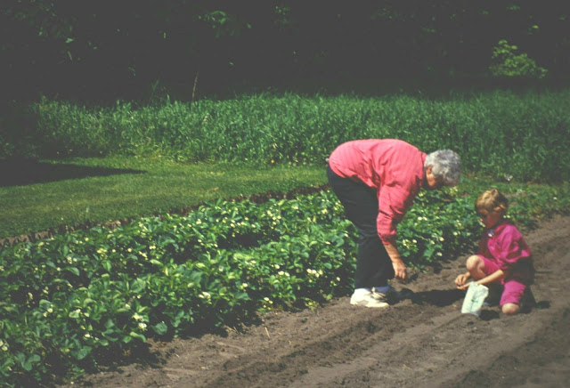 Young Kaitlin planting seeds in a garden with her grandma