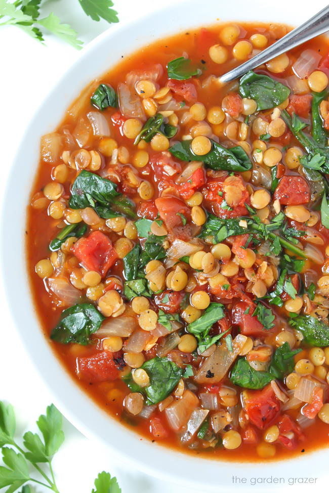 Bowl of smoky tomato lentil soup with spoon